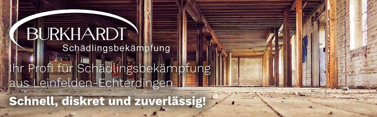 Schädlingsbekämpfung Ludwigsburg | 🥇 Burkhardt » Kammerjäger & Entrümpelung