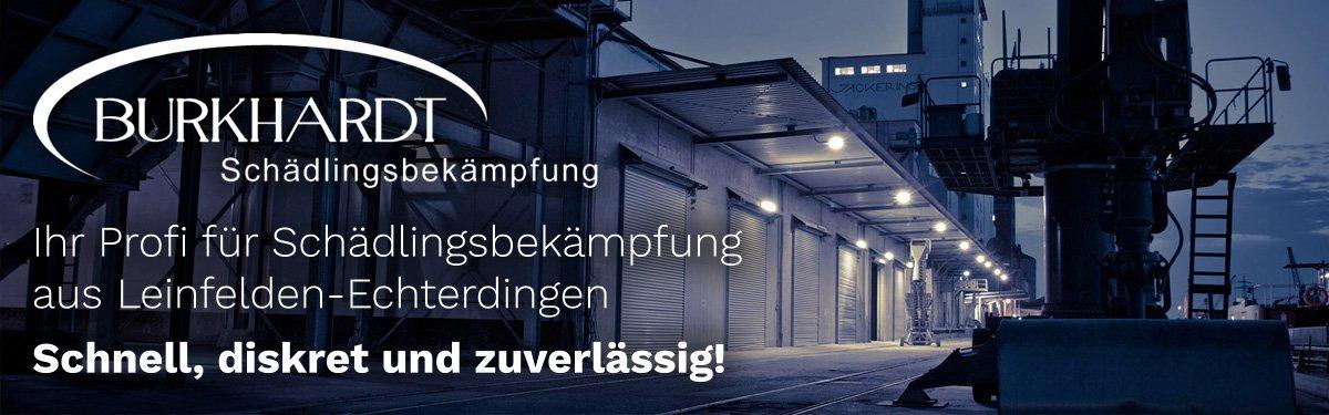 Schädlingsbekämpfung Filderstadt | 🥇 Burkhardt » Kammerjäger / Entrümpelung