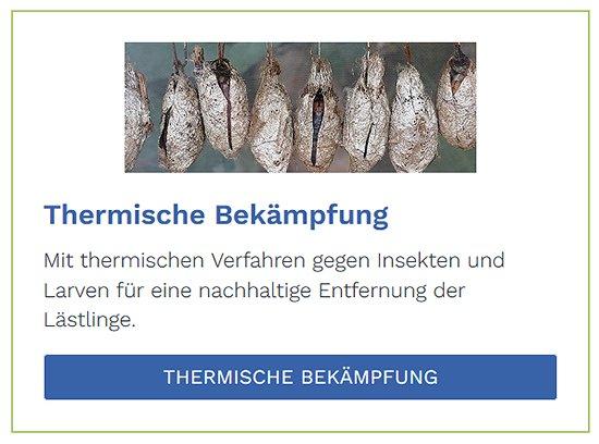 Thermische Bekämpfung im Raum  Ostfildern