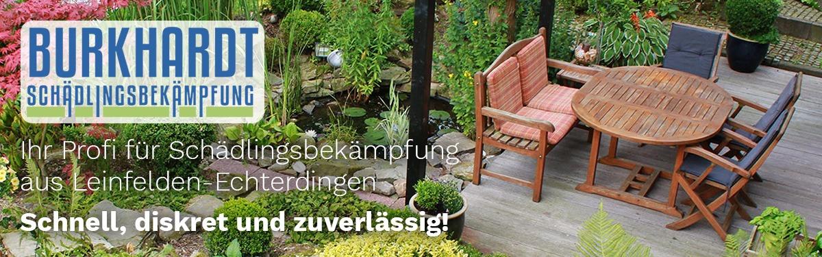 Schädlingsbekämpfung Köngen | 🥇 Burkhardt » Kammerjäger, Taubenabwehr